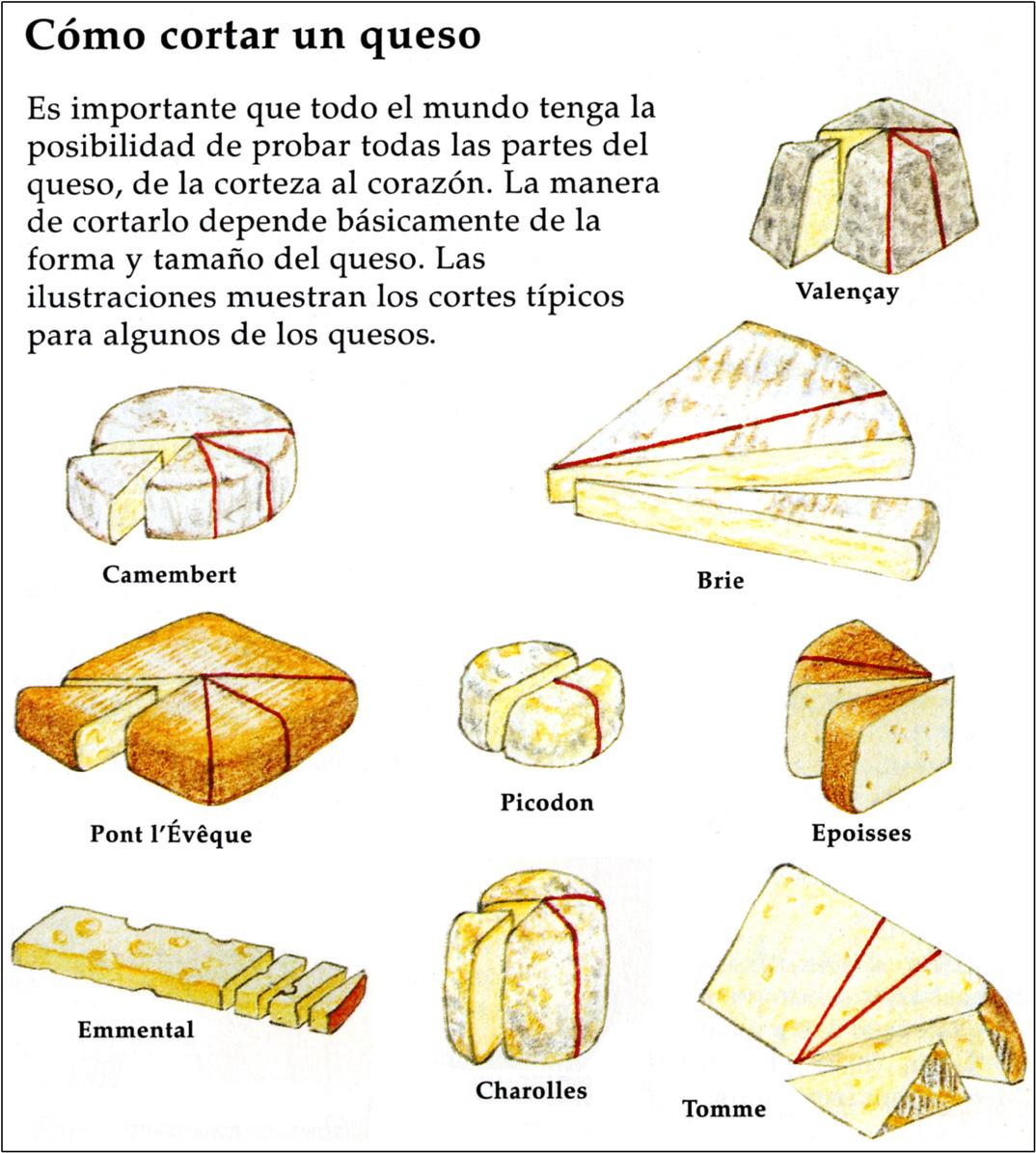 Todo sobre quesos mundoquesos cortar queso - Todo sobre la cocina ...