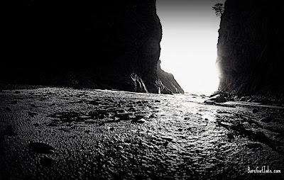 washington coast beach