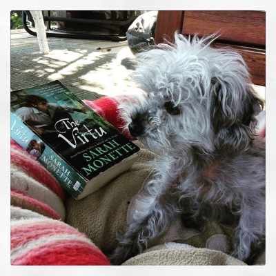 Murchie sits in a pink and beige plush dog bed on a deck. Beside him is a paperback copy of The Virtu. Its blue-toned cover features a red-haired man perched on an outcropping, knife in hand.