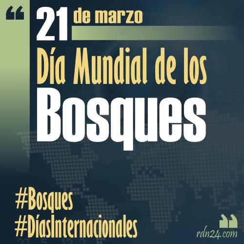 21 de marzo – Día Internacional de los Bosques #DíasInternacionales