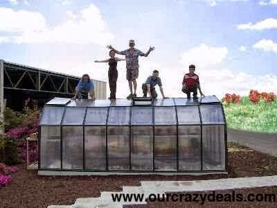 Sturdy Greenhouses: