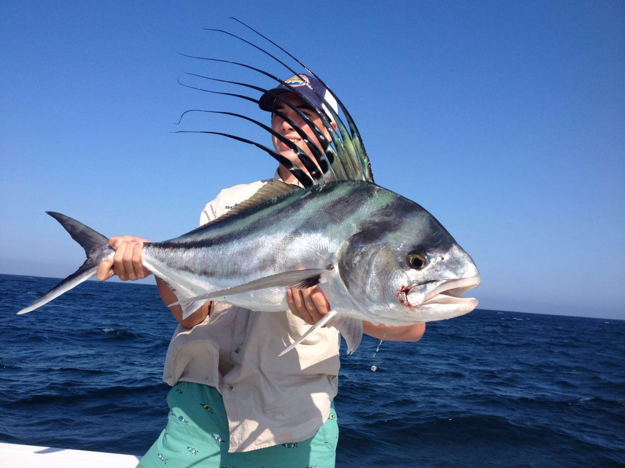 Baja anglers june 27th giant roosterfish for Rooster fish cabo