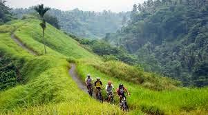 Downhill-cycling