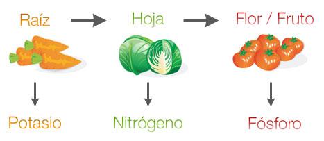 Nutrientes en la rotación de cultivos