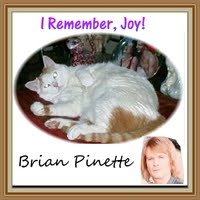 I Remember Joy! (Live) Brian Pinette  99¢ download