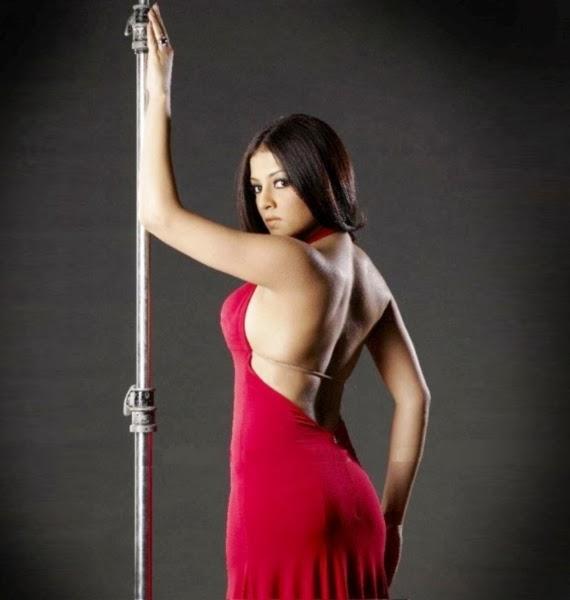 Celina Jaitly Nude Backless photo