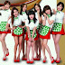 "T-ara and their promotional photo for ""Gibalhan Chicken"""