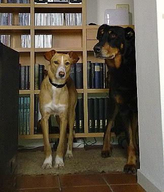Ruty y Yako en casa