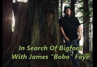 Bobo Interview Radio
