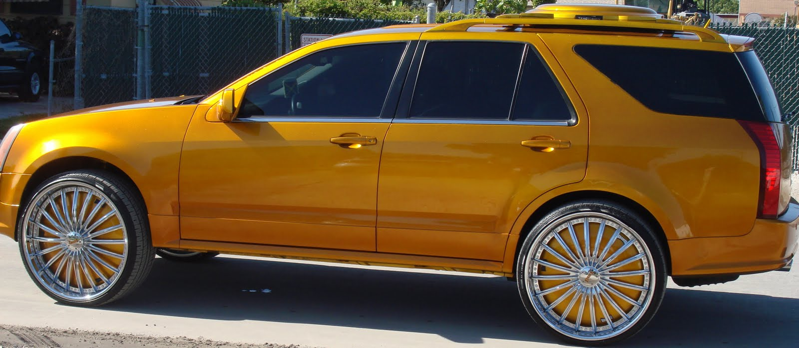 Whytee954 Cars On Big Rims Bully Pitbulls Candy Gold