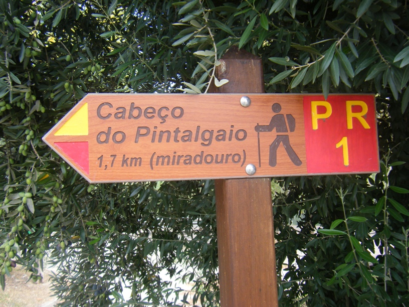 Percurso Pedestre do Cabeço do Pintalgaio