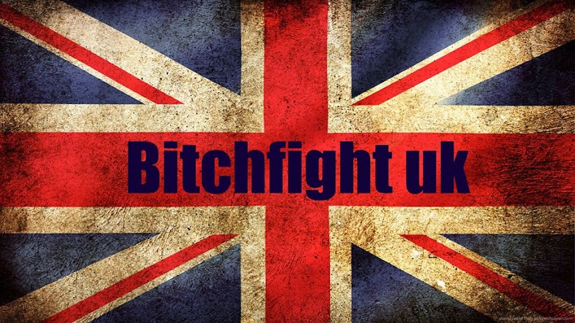 bitch fight blog