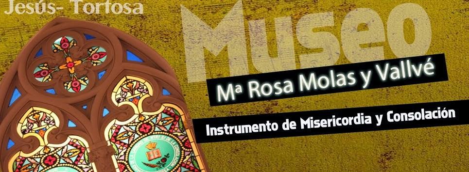 Museo María Rosa Molas