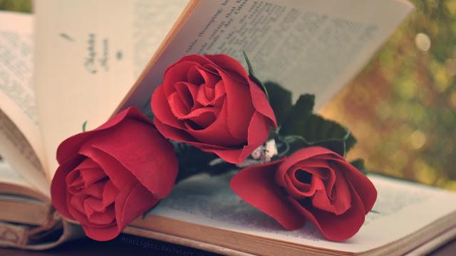 Tres rosas rojas en un libro