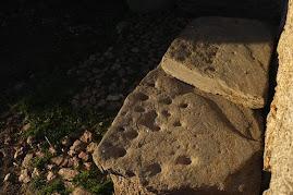 Arqueologie cicuirana