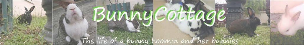 BunnyCottage