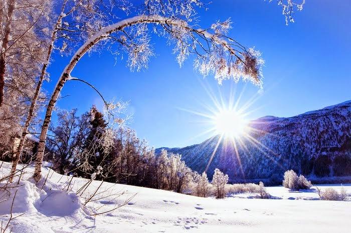 В лучах солнца