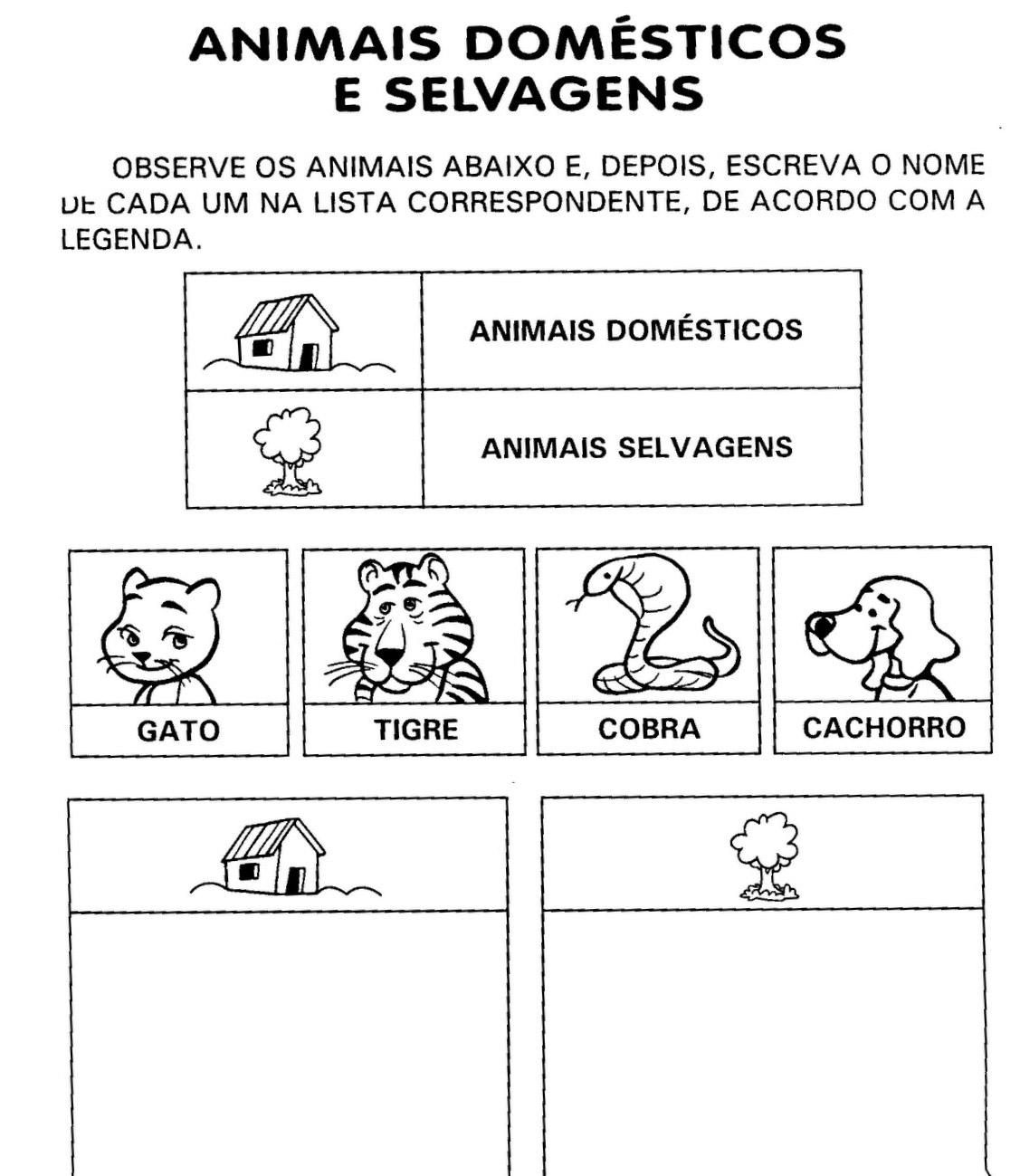 Atividades 1   Ano   Animais   Dom  Sticos E Selvagens