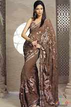 Pakistani Saree Fashion