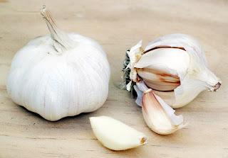 Klasifikasi Bawang Putih (Allium sativum L.)
