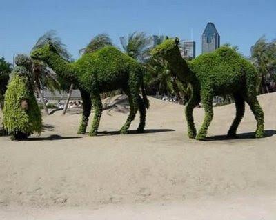 grass made lizard