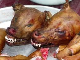 Makan Daging Anjing Gila 13 Orang Jalani Rawatan