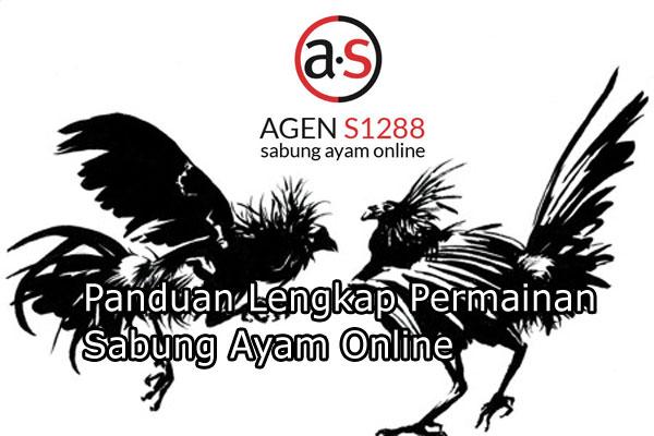 Panduan Lengkap Permainan Sabung Ayam Online