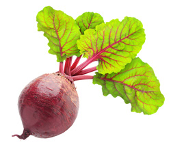 Beets-magrush