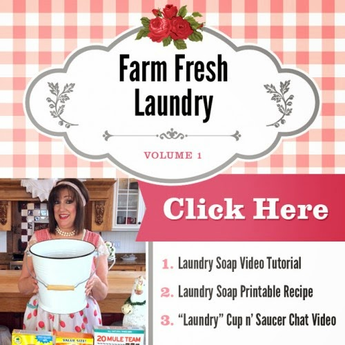 http://www.sugarpiefarmhouse.com/farm-fresh-laundry-video-recipe-bundle