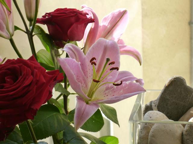 Rosen und Linien im Licht, daneben Flusskiesel in der transparenten Glasvase