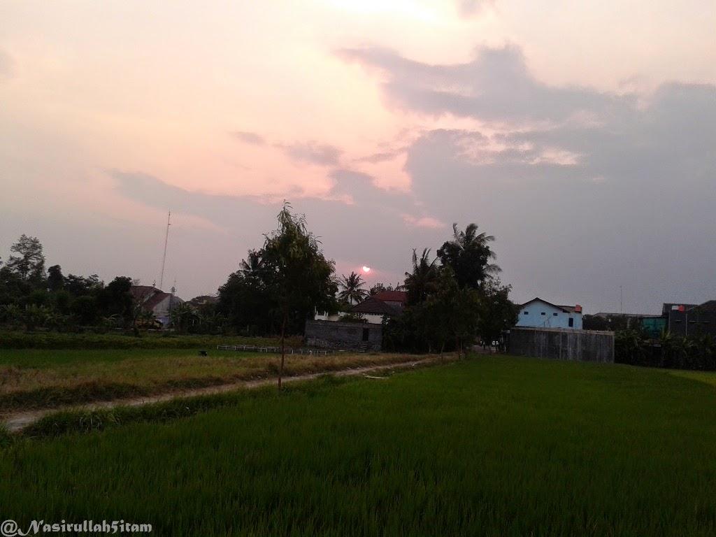 Memandang sunset dari pematang sawah