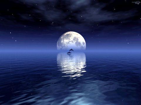 過眼未雲煙: 鏡花水月