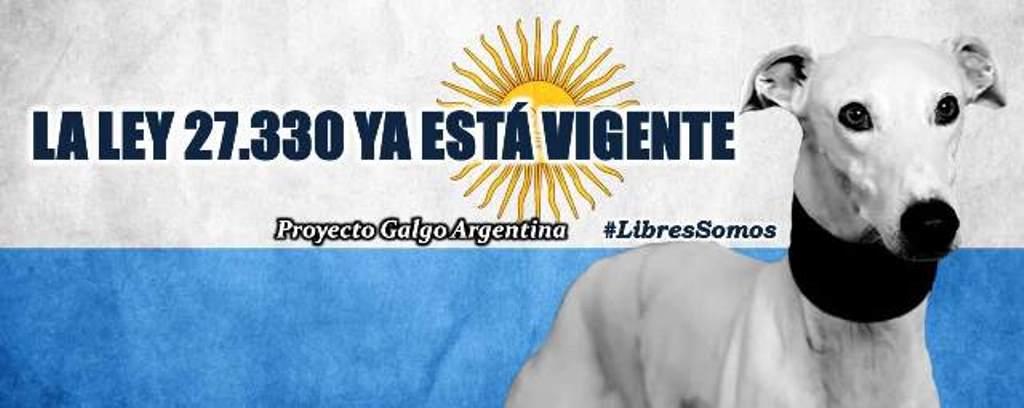 PGA - Proyecto Galgo Argentina