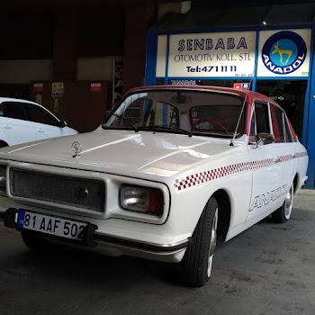 1974 MODEL ANADOL