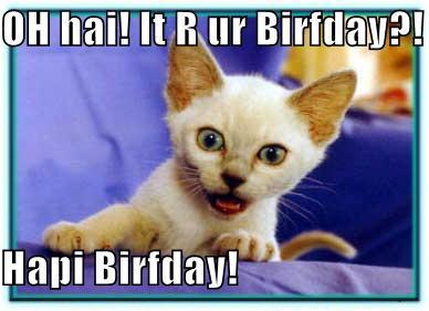 Photography LOLCats Happy Birthday