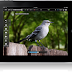 Apple TV & iPad Camera, Audio & Video support