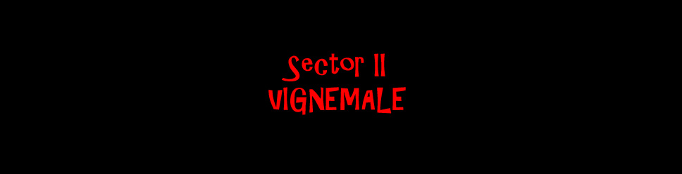 SECTOR II - VIGNEMALE