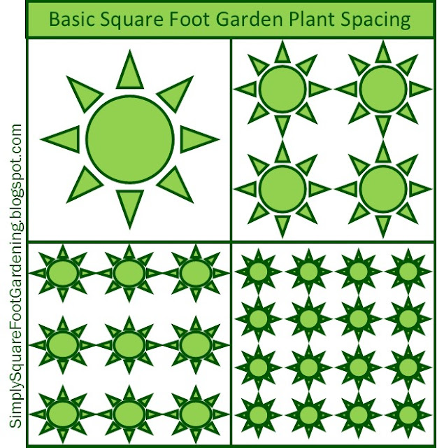 Basic Square Foot Gardening Plant Spacing