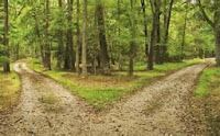 Choose to take the road that will lead you to Contentment
