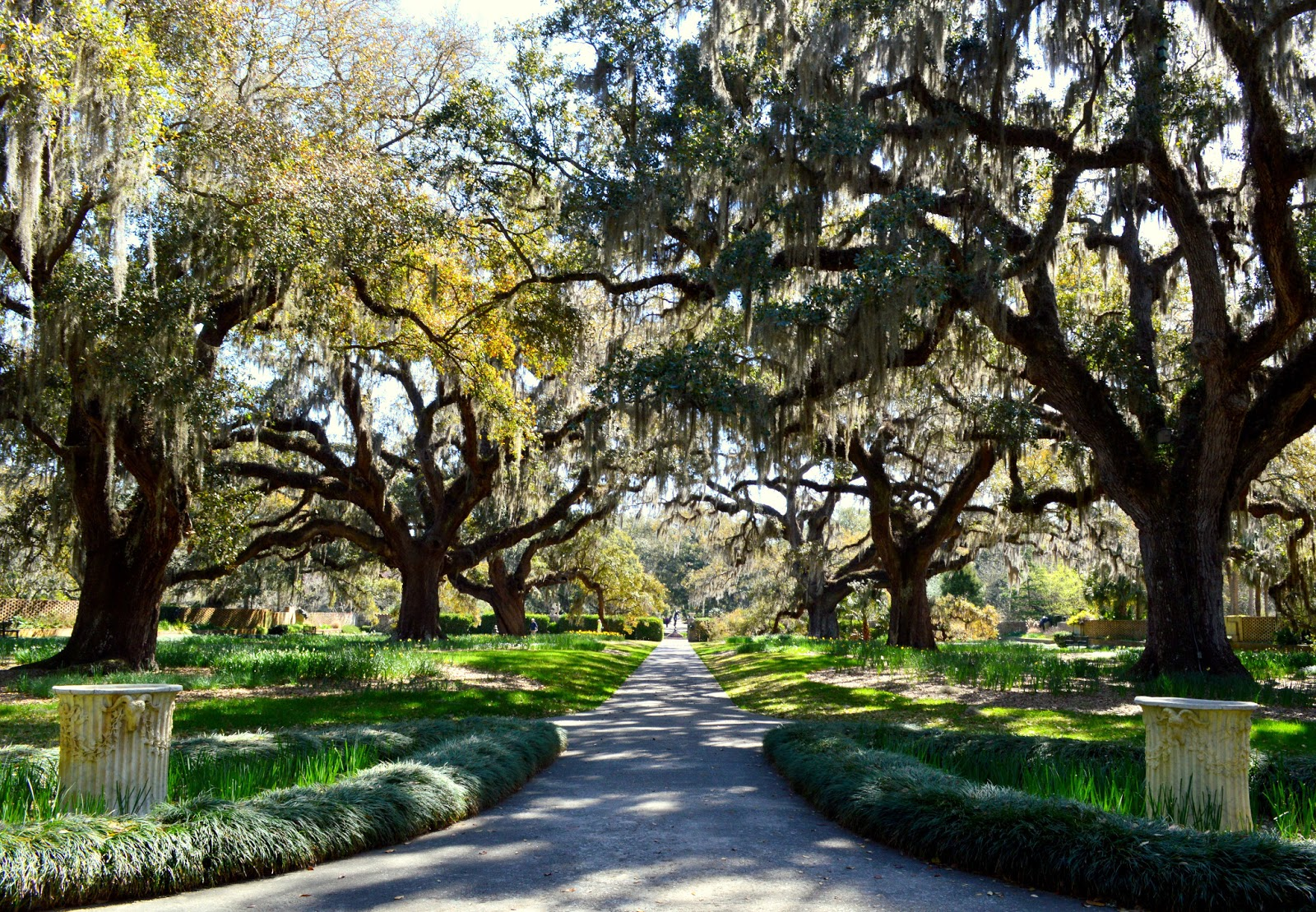 Mothering With Mindfulness Brookgreen Gardens