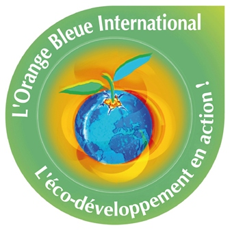 Orange Bleue Afrique