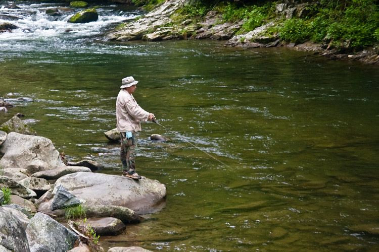 A free daily visitor guide for the north carolina for Nc fishing laws
