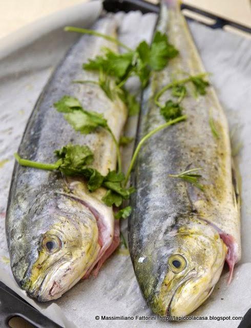 Cucinare il pesce 10 idee per cucinare il pesce spada in - Come cucinare il pesce serra ...