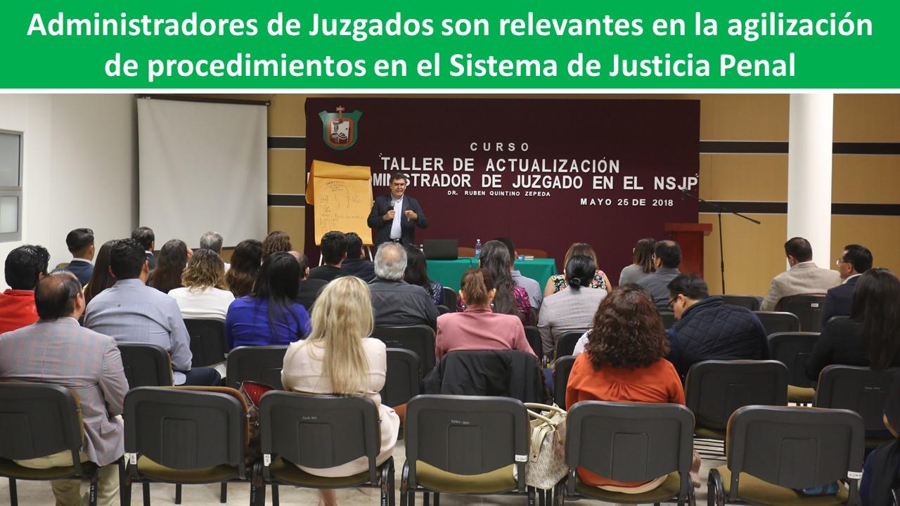 procedimientos en el Sistema de Justicia Penal