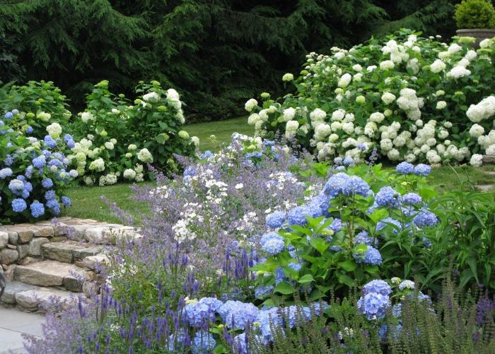 decorar con hortensias guia de jardin