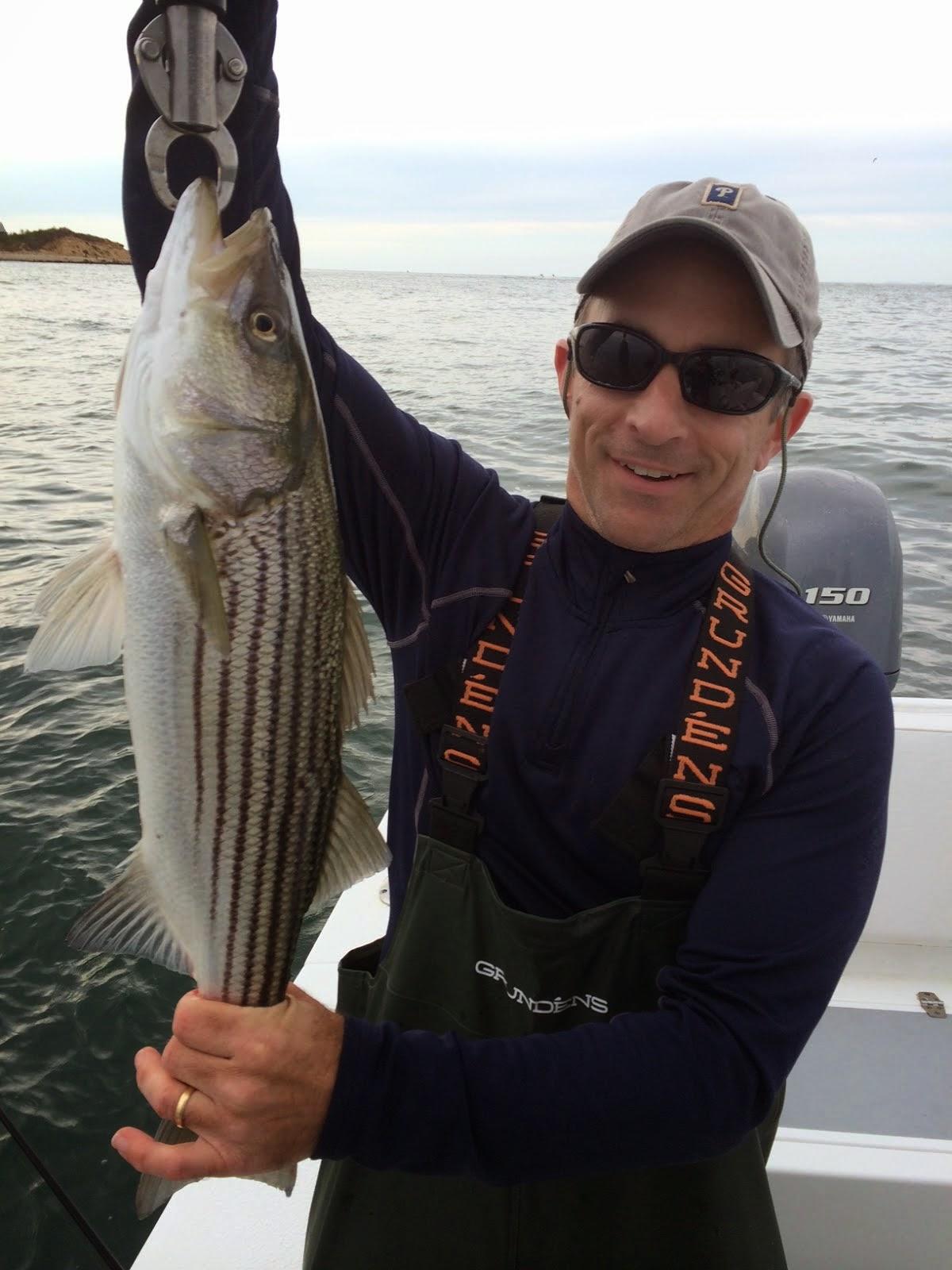 Jersey cape guide service montauk report for Montauk fishing report
