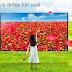 Sony México espera auge en venta de televisores por el Mundial
