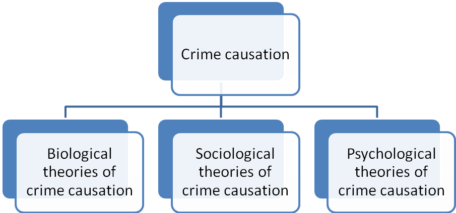 explain one sociological theory crime causation Theories and causes of crime introduction there is no one 'cause' of crime crime is a highly  sociological theories  2 lombroso and biological positivism  left realists also support two other key theories to explain crime.