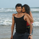 Priyamani,Sumanth In Raaj Movie Stills