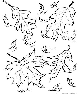 foglie immagine colorare